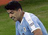 Luis Suarez bizarrely appeals for handball despite shot being saved by goalkeeper