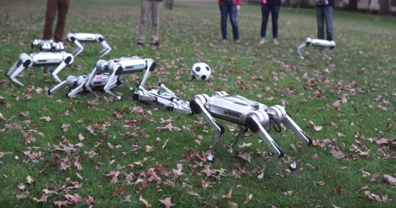 MIT made an army of tiny, 'virtually indestructible' cheetah robots that can backflip and even play with a soccer ball - see them in action in this new video
