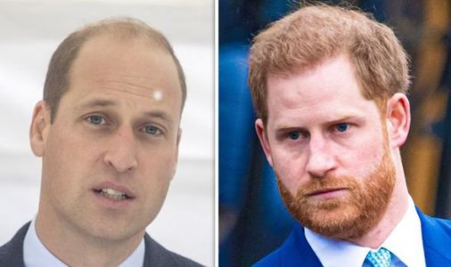 Prince Harry and Prince William have 'little chance' of healing rift post-Megxit