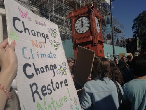 Wales's nature crisis requires the same attention as the climate crisis