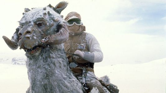 You're Not Meant to Capitalize Star Wars' 'tauntaun'-and There's a Suitably Weird Reason Why