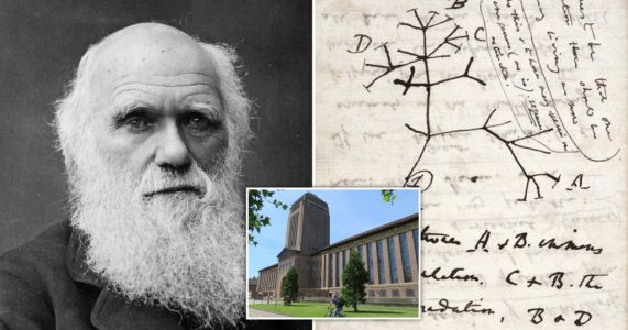 Charles Darwin manuscripts stolen from Cambridge University library