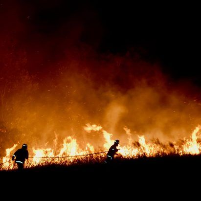 Australian architects offer pro-bono design services to those impacted by bushfire crisis