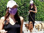 Aubrey Plaza goes braless for casual July 4th stroll around Los Feliz with her dogs