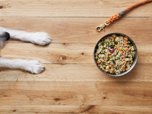 The Farmer's Dog sends your dog fresh food weekly - I recommend it for its customized meal plans and high-quality ingredients
