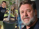 Russell Crowe gifts Bindi Irwin and Chandler Powell a fig tree as a wedding present