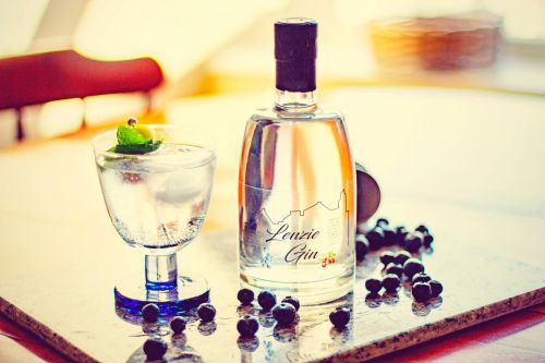 15 of the best new Scottish gins to check out for International Gin & Tonic Day