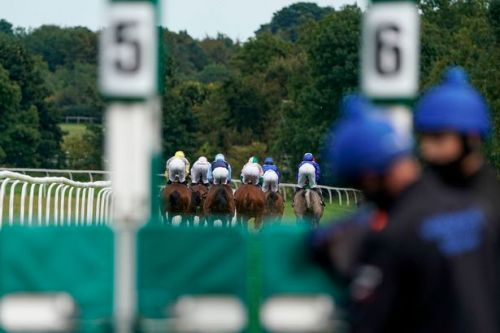 Racing's new £1.8 million team competition to start next summer