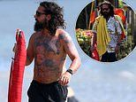 Shia LaBeouf goes shirtless during beach day in Hawaii. following FKA twigs abuse allegations