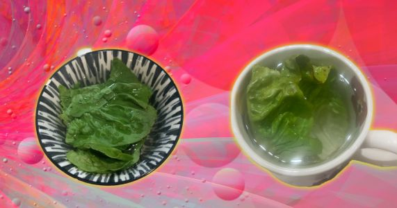 Does lettuce tea actually help you fall asleep quicker or sleep better? We tried it out