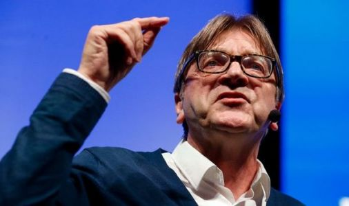 'That's what caused Brexit!' Anger at deluded Verhofstadt's EU exit rant