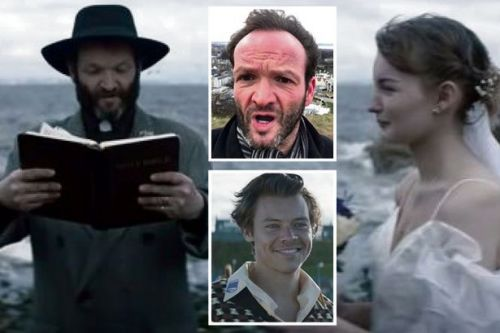 Harry Styles video nasty as race-hate Brexit Party Scot stars in new hit song