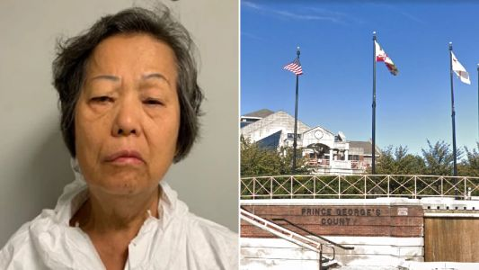 Woman, 73, 'beat 83-year-old neighbor to death with a brick'