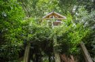 Spend the weekend in.a treehouse