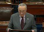 Chuck Schumer says Donald Trump incited an ERECTION instead of the insurrection