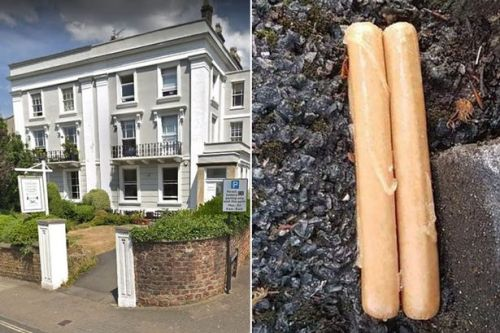 Police probe after 'suspicious-looking' man leaves two sausages outside school