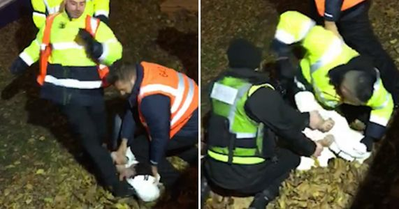 Winter Wonderland bouncers kick teen boy in the head after mass brawl
