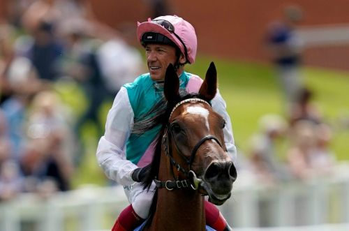 Enable - Horse racing special: 33/1 odds to win at York, Ebor Festival
