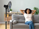 These top-rated fans are now on sale on Amazon