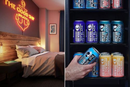 Brewdog to open beer-themed hotels in the UK complete with in-shower beer fridges