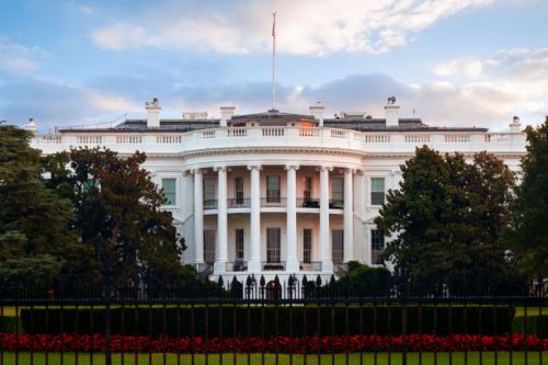 White House signals coming antitrust push with Tim Wu appointment