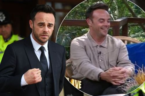 I'm A Celeb's Ant McPartlin mocks own sobriety after drink-driving conviction
