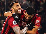 Bournemouth 3-1 Brighton: Callum Wilson nets first league goal since September to lift the gloom