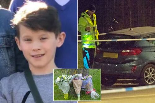 Orpington 'hit-and-run': Boy, 11, struck by car dies in hospital