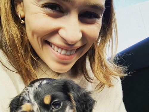 Emilia Clarke's 'new main squeeze' is an adorable dachshund puppy named Ted