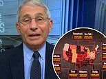 Dr. Fauci warns of 'more ominous' strains of COVID-19 from Brazil and South Africa