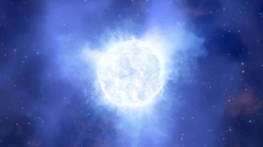 Now you see it, now you don't; a massive star disappears