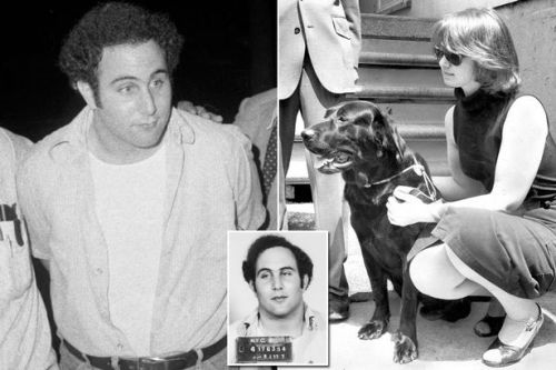 Son of Sam shooter who killed six was 'possessed by demon dog called Harvey'