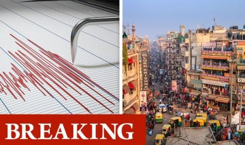 India earthquake: Delhi rocked by magnitude 3.2 quake days after warning of major tremor