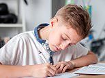 Only a fifth of state-school pupils work for 20 hours a week during lockdown lessons