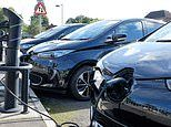 Fresh calls for government to scrap VAT on electric cars or increase grants to boost sales