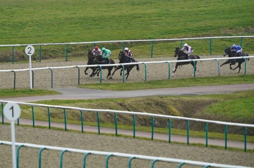 Lingfield tips: Racecard, analysis and preview for the Ladbrokes Handicap on Tuesday