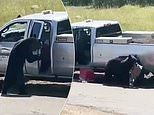 Bear breaks into a parked pickup truck and makes off with a picnic basket in Colorado