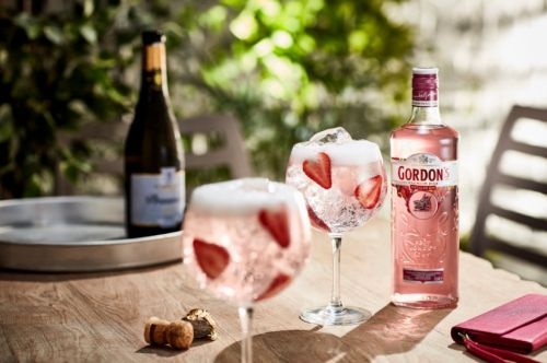 The Great O'Briens Gin Sale: Here's Five Fantastic Gins And How To Perfectly Serve Them
