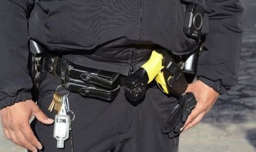 Royal protection police replace guns with Tasers in 'nonsensical move'