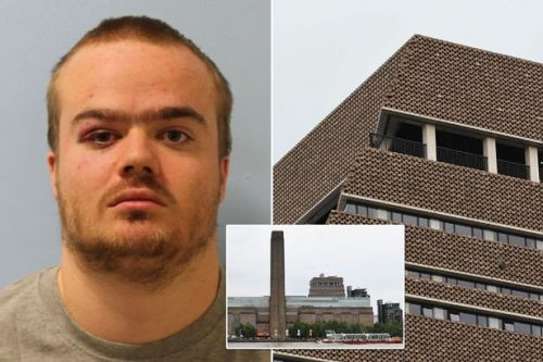 Teen who threw boy, 6, from Tate Modern balcony 'wanted to be on the news'