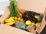 How to fork out for medicine or food brought to your door in lockdown