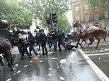Police horse bolts as thousands clash with police at Black Lives Matter demonstrations in London
