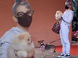 Kelly Osbourne keeps it casual as she takes her two dogs to Beverly Hills Hotel in grey sweatsuit