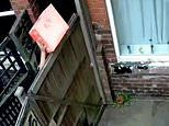 Moment 'lazy' Yodel delivery man damages parcel by throwing it over customer's six-foot fence
