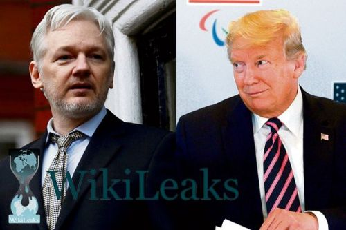 Trump offered WikiLeaks' Assange a pardon to cover up Russian hack, lawyer tells court - CNET