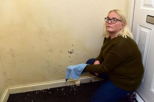 Wipe it with a cloth - what housing officer allegedly told mum with damp home