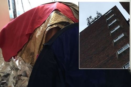 Woman who fears phone mast radiation is making her ill sleeps in foil covered tent