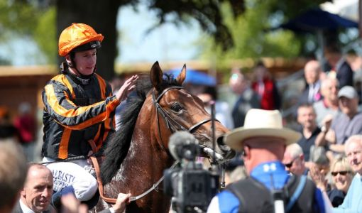 Haydock Tips: Racecard, analysis and betting preview for the feature Betway Brigadier Gerard Stakes at Haydock