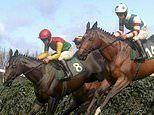 VIRTUAL GRAND NATIONAL 2020 LIVE: Will Tiger Roll win?