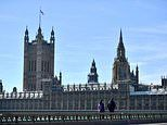Welsh Assembly to debate over Zoom as MPs demand Parliament do the same